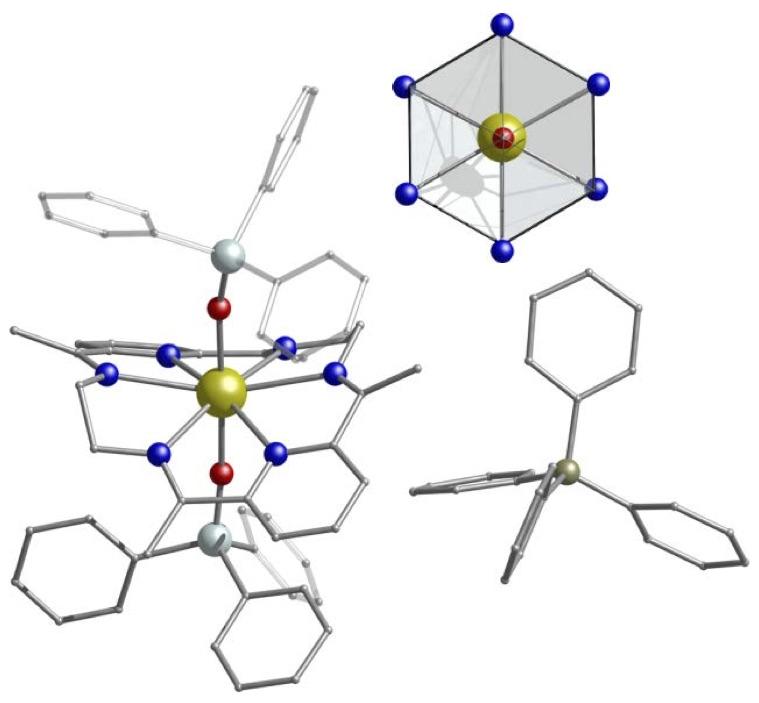 Molecular Magnetism Web on